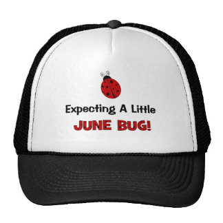Expecting A Little June Bug Maternity Mesh Hats