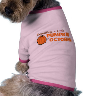 Expecting A Little Pumpkin In October Doggie Shirt