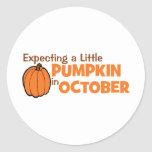 Expecting A Little Pumpkin In October Stickers