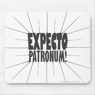 Expecto Patronum Mousepads