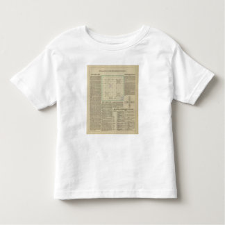 Explanation of Government Surveys Toddler T-Shirt