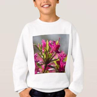 exploding pink flower sweatshirt
