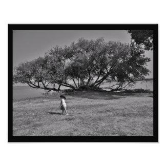 Explorations Photo Print
