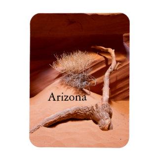 Explore Arizona Magnet