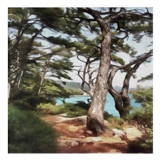 Explore Dream Discover Acrylic Print