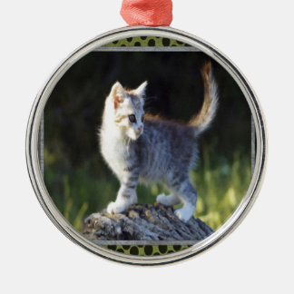 Explorer Kitty Silver-Colored Round Decoration