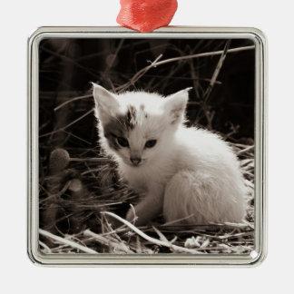 Exploring Kitty Christmas Ornament