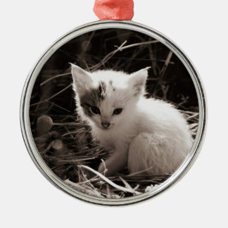 Exploring Kitty Silver-Colored Round Decoration