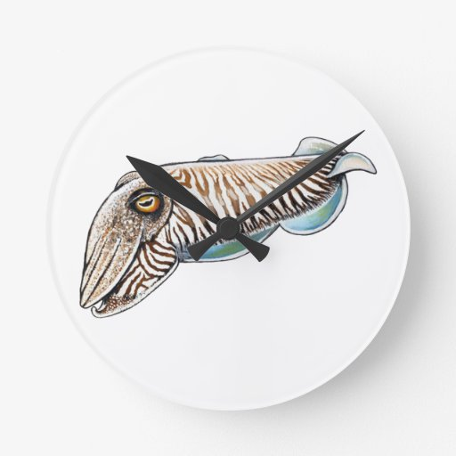 EXPLORING THE REEF ROUND WALL CLOCKS