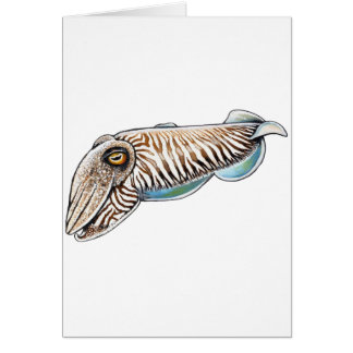 EXPLORING THE REEF GREETING CARD