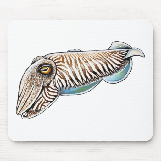 EXPLORING THE REEF MOUSE PAD
