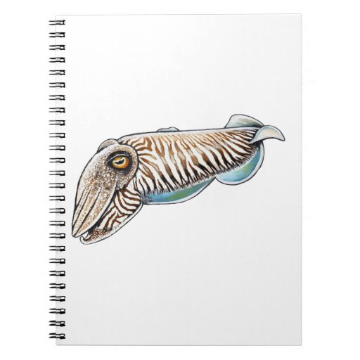 EXPLORING THE REEF NOTE BOOKS