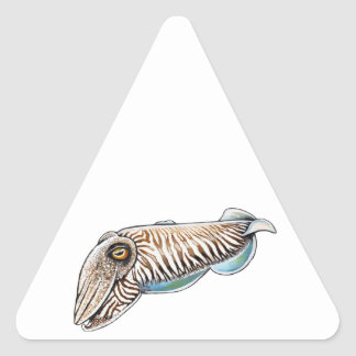 EXPLORING THE REEF TRIANGLE STICKER