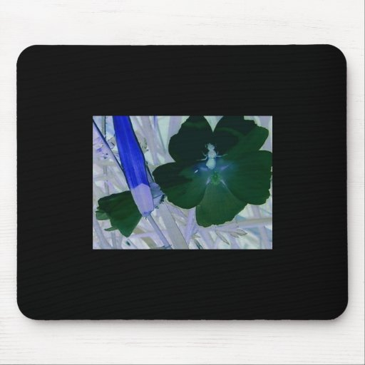 Exposed Morning Glory w/Bee Mousepad