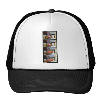 Expression with Mister Squishy Trucker Hats