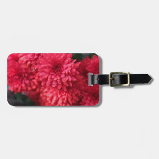 Exquisite Echo Luggage Tag