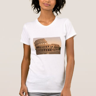 Exterior of the Colosseum, Rome, Italy T-Shirt