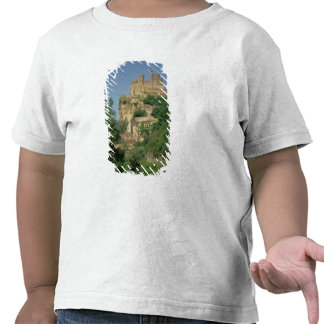 Exterior view from the lower cliffs tee shirt