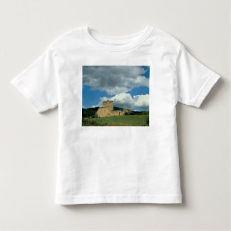 Exterior view of the fortress, built 1038-43 toddler T-Shirt