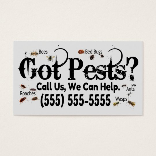 Exterminator Real Bugs Advertisement Business Card