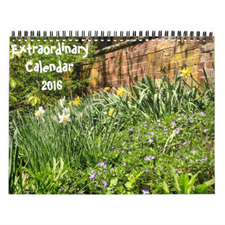 Extraordinary-2016 calendar