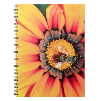 Extreme Close-Up Of A Bee Collecting Pollen Spiral Note Book