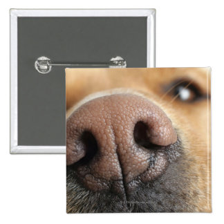Extreme close-up of a dog nose. 15 cm square badge
