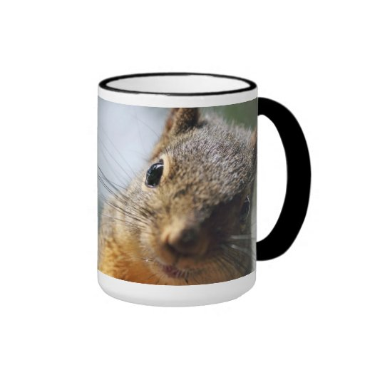 Extreme Closeup Squirrel Picture Coffee Mugs