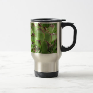 Extreme Hen And Chicks Coffee Mugs