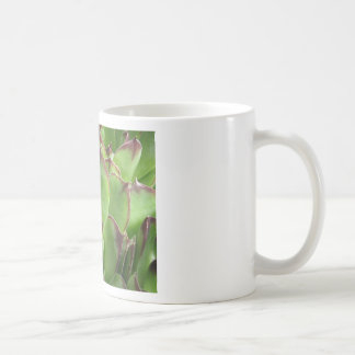 Extreme Hen And Chicks Classic White Coffee Mug