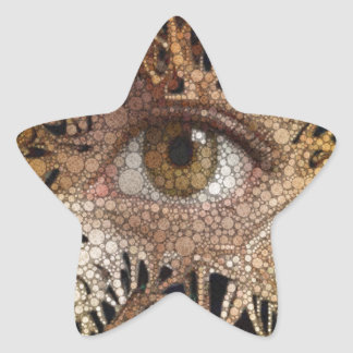 Eye Abstract Art Star Sticker