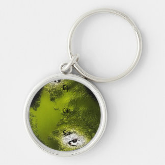 Eye Can See Silver-Colored Round Key Ring