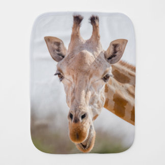Eye contact with giraffe burp cloth