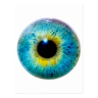 Eye I Postcard
