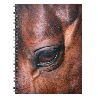 eye of horse notebooks
