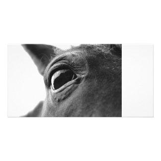 Eye of pony 1 custom photo card