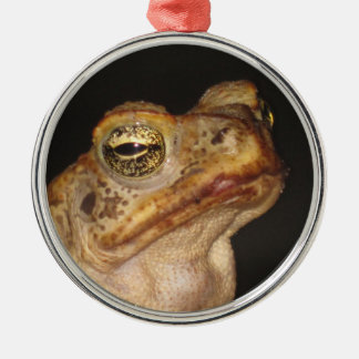 Eye of the frog. Silver-Colored round decoration