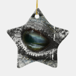 Eye Of The Reptile Ceramic Star Decoration