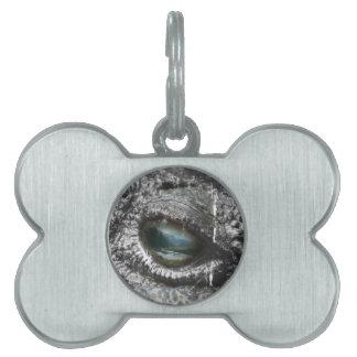 Eye Of The Reptile Pet ID Tag