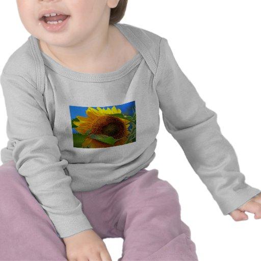 Eye of the Sunflower Tee Shirts