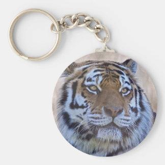 Eye of the Tiger Keyring Basic Round Button Key Ring