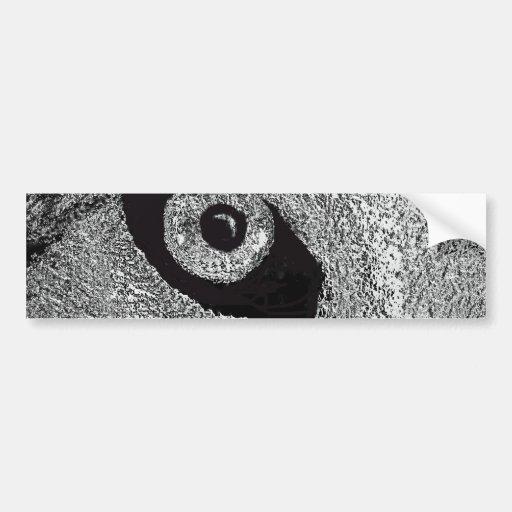 eye of wolf car bumper sticker