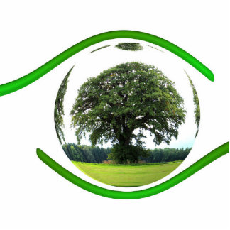 Eye on Ecology Photo Sculpture Magnet