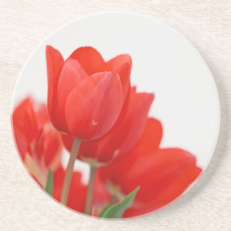 Eye-poping Red Tulips Drink Coasters