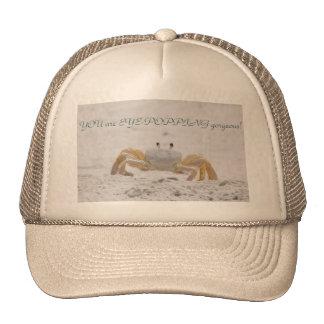 Eye-Popping Gorgeous Hat