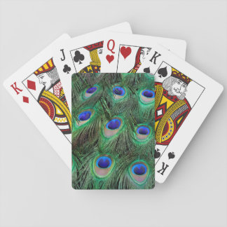 Eye-spots on Male Peacock feather Playing Cards