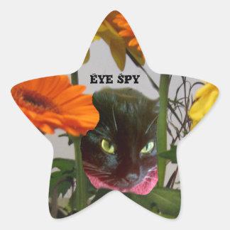 Eye Spy Cat Sticker