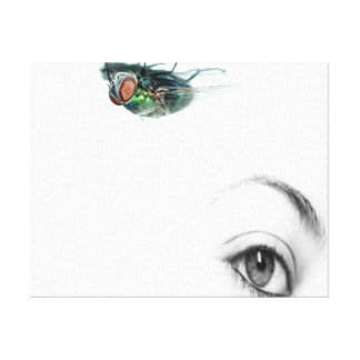eye with fly canvas prints