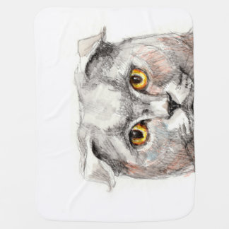 Eyes of a Cat Baby Blanket