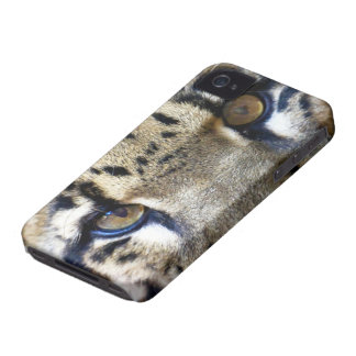 Eyes of a clouded leopard iPhone 4 case